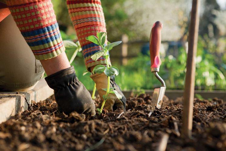attrezzi per il giardino