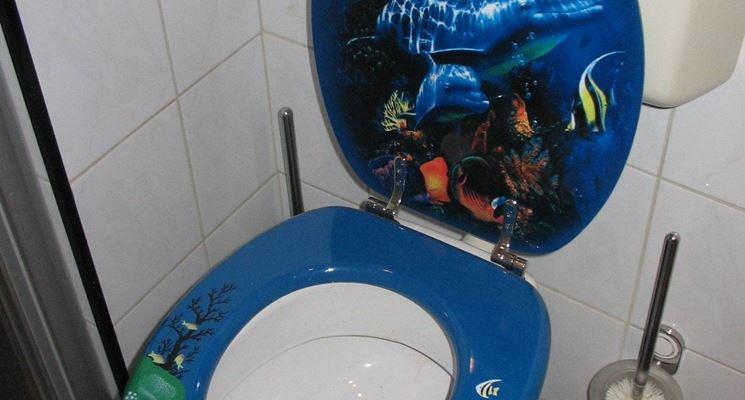 modelli di sedili wc