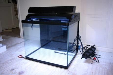 Allestire un acquario oggetti di casa for Oggetti per acquario