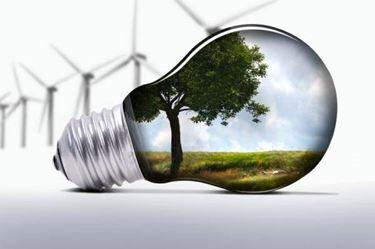 energia delle biomasse