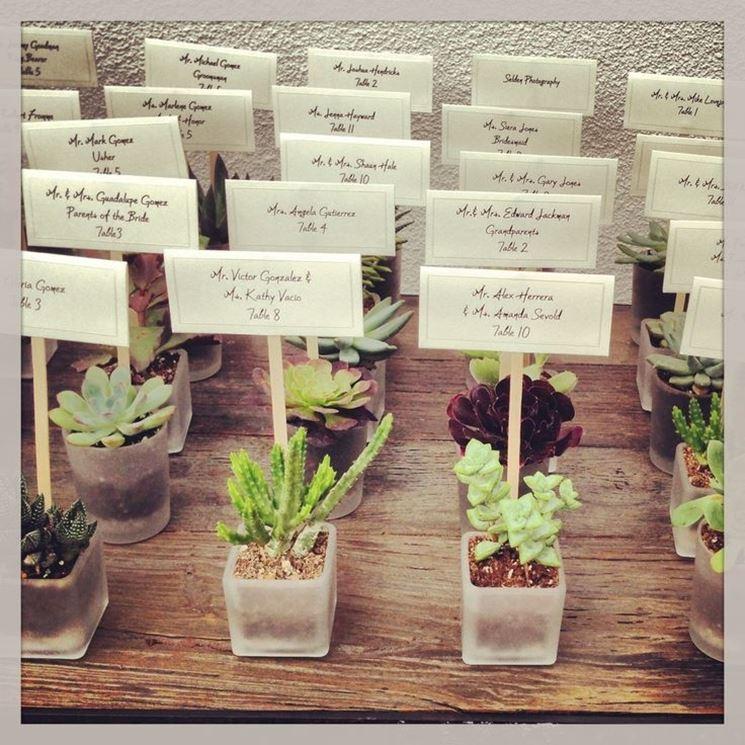 esempio di piante grasse per matrimonio