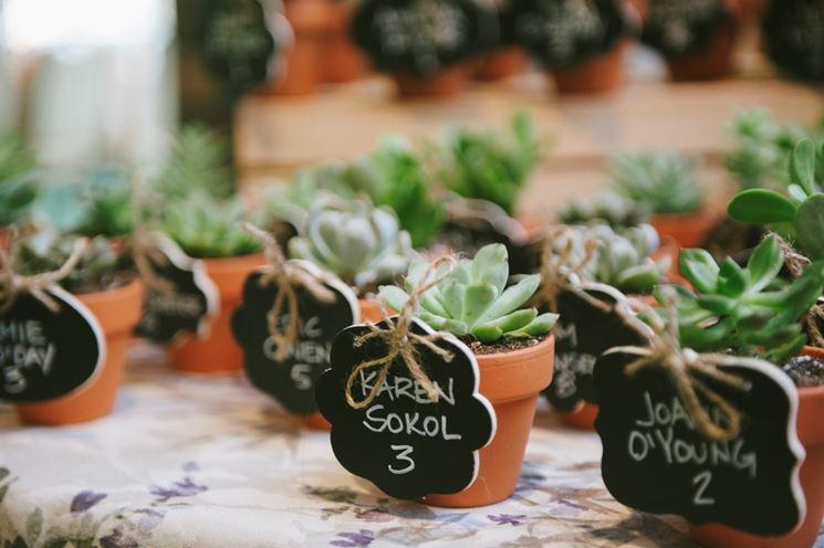 segnaposto con piante grasse