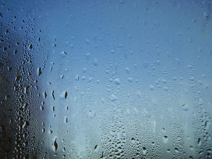umidità sui vetri