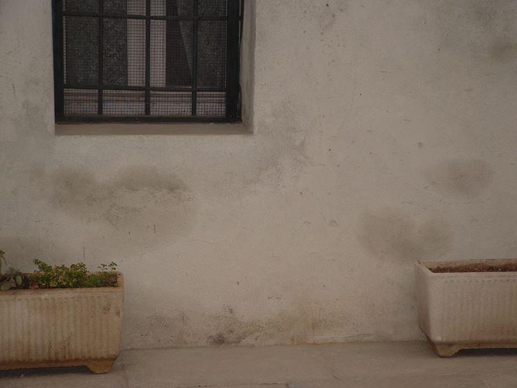 Deumidificare la casa col sifone atmosferico consigli pratici sifone atmosferico come - Deumidificare la casa ...