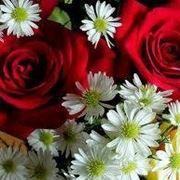 Alcune note sul linguaggio dei fiori