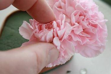 fiore segnaposto
