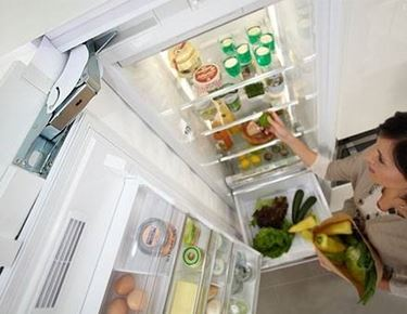 Le istruzioni per l'uso per frigoriferi e congelatori