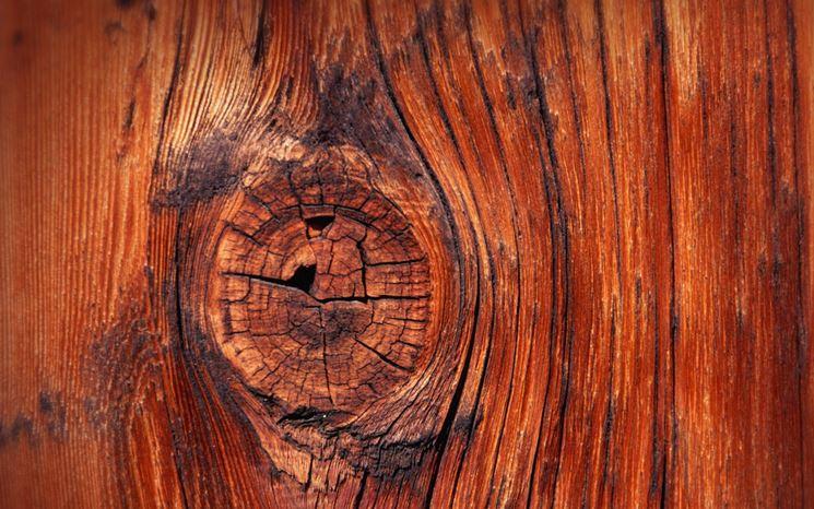 nodo del legno