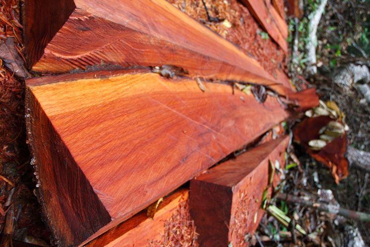 legno di mogano