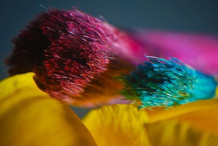 pennelli colorati
