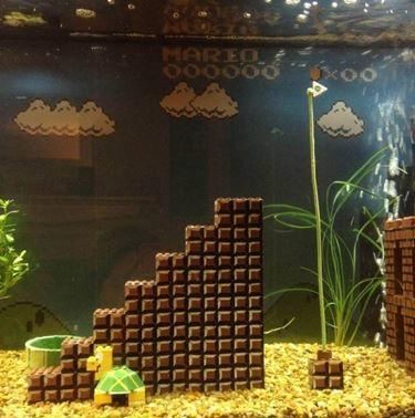 acquario super mario