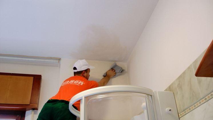 preparazione parete per applicare pittura antimuffa