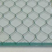 esempio di vetro retinato