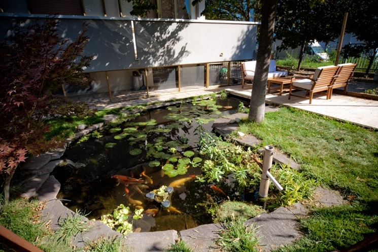Laghetto in giardino come realizzarlo arredamento for Piante da laghetto
