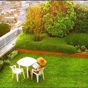Terrazze e giardini
