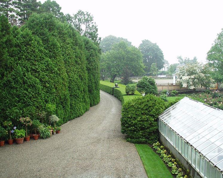vialetto per il giardino