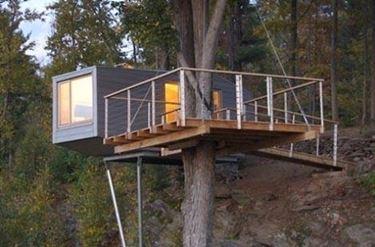 casa moderna su albero
