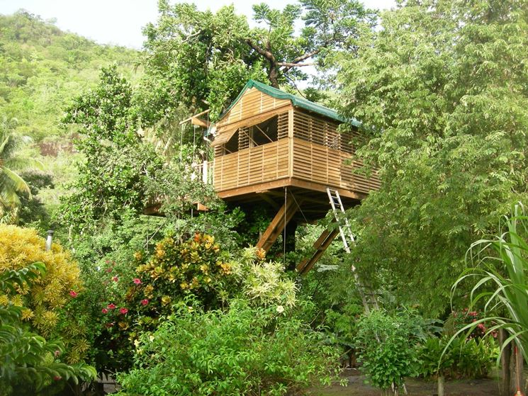 Case sugli alberi casette for Case in legno sugli alberi