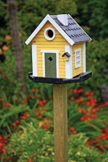 Super Casette per uccelli - Casette WV14