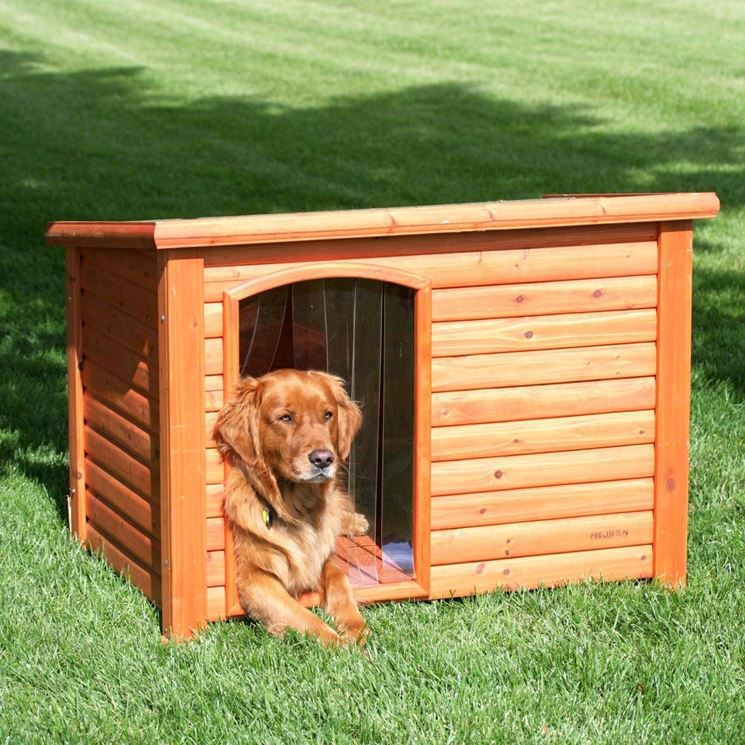 Costruire una cuccia per cani casette for Dog house for labrador retriever