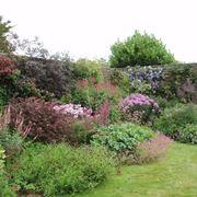 bordura giardino