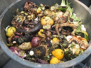 compost nell'orto