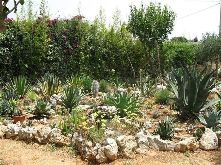 giardini rocciosi fai da te - Giardinaggio