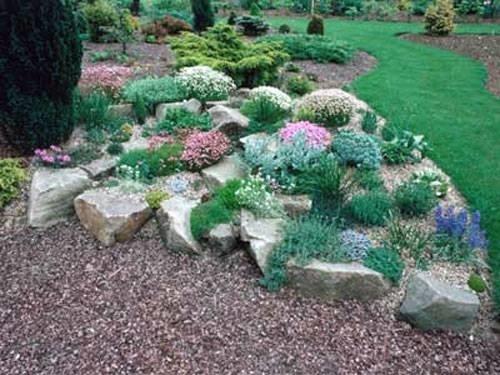Giardini rocciosi fai da te giardinaggio - Composizione giardino ...