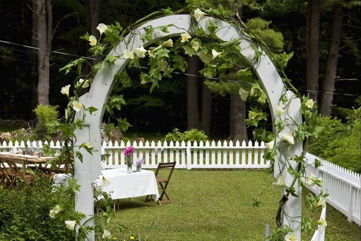 Arco per rampicanti materiali per il giardino arco per for Piante da giardino rampicanti