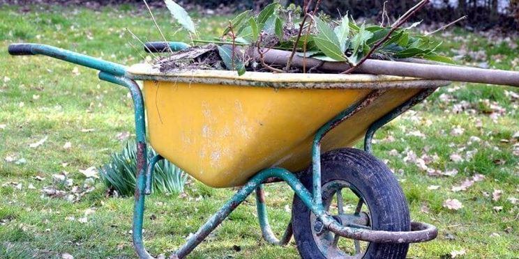 Carriola per il giardinaggio