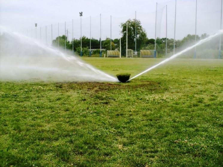 esempio di irrigatore per giardino