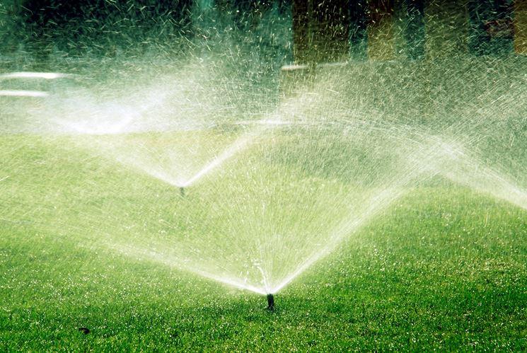 Irrigazione di un giardino