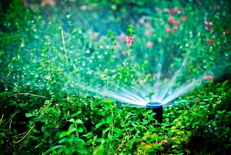 Modello di irrigatore a battente