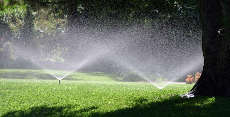 Modello di irrigatore statico