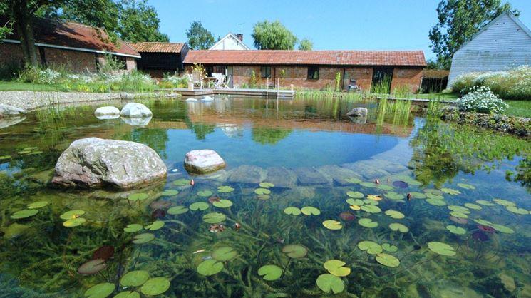 Piscina naturale piscina fai da te che cos 39 una piscina naturale - Biopiscina fai da te ...