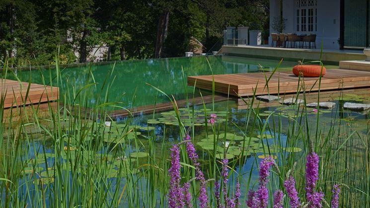 esempio di piscina naturale