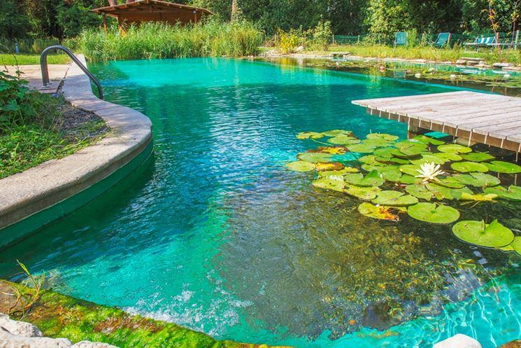 piscina naturale piscina fai da te che cos 39 una