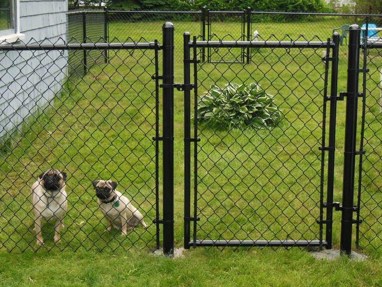 Recinti per cani fai da te recinzioni come realizzare un