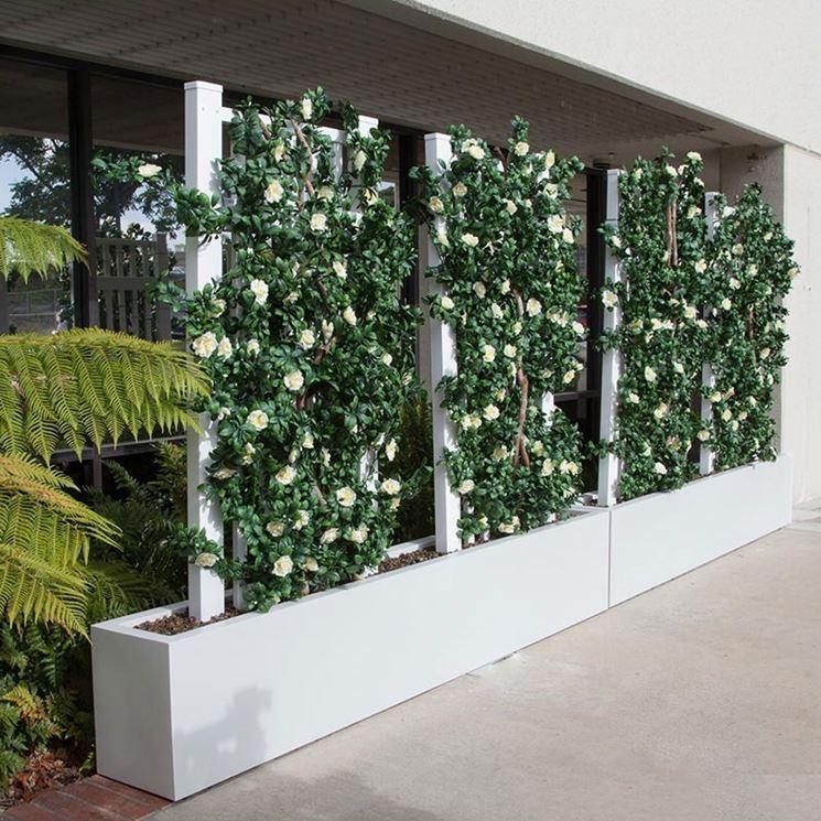 Grigliati In Plastica Per Giardino.Separe Da Giardino Recinzioni Tipi Di Separe Per Esterni