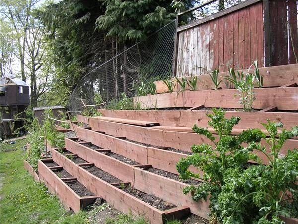 Come realizzare un giardino o un orto sul terrazzo serre - Idee per realizzare un giardino ...