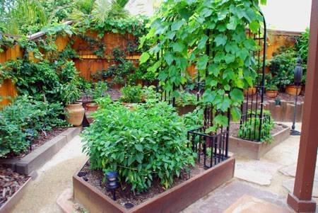 Come realizzare un giardino o un orto sul terrazzo - Serre