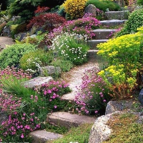 Giardini mediterranei tipi di giardini come creare un - Giardino mediterraneo ...