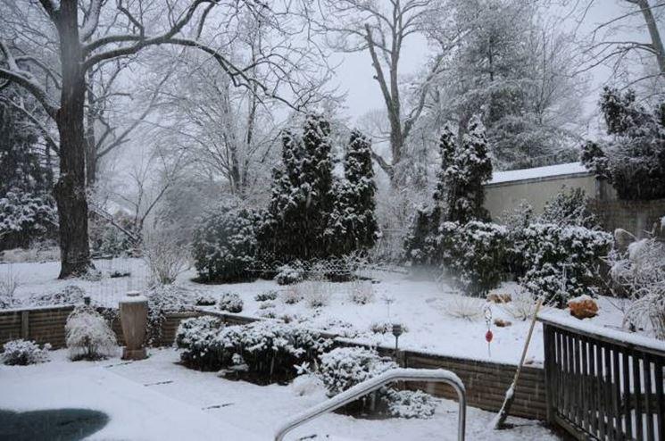 Giardino invernale tipi di giardini for Giardino invernale