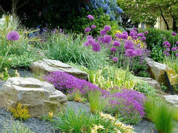 giardino <strong>roccioso</strong> fiorito