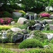 aiuole rocciose