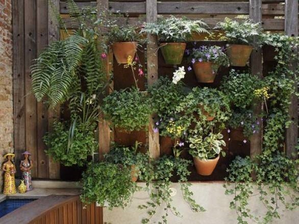 giardino verticale fai da te - tipi di giardini
