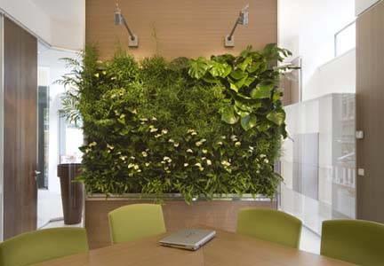 Giardino verticale fai da te tipi di giardini - Giardino verticale interno ...