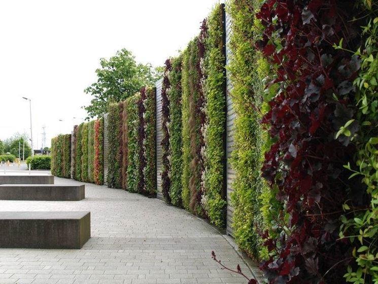 pareti verdi - Tipi di giardini