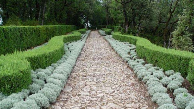 Progetto giardino piscine e giardini with progetto giardino immagini progetto giardino - Progetti giardino per villette ...