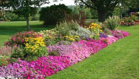 soluzioni per giardino tipi di giardini